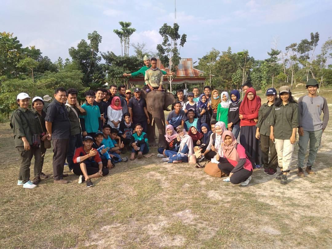 LindungiHutan Riau, Siap Menghijaukan Indonesia