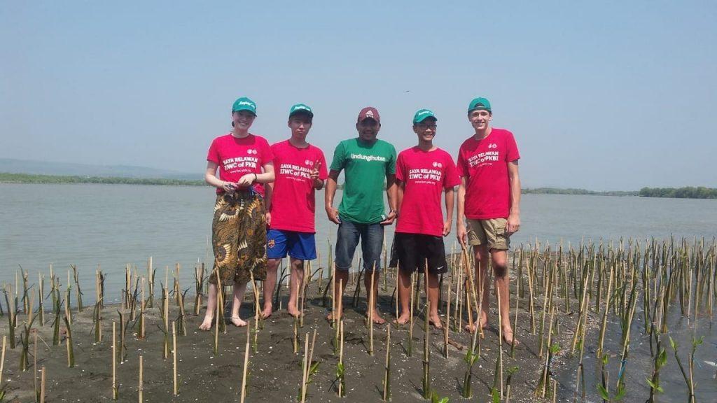 Terimakasih Indonesia International Work Camp telah Bersama Menghijaukan Indonesia!