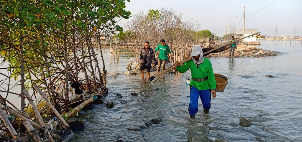 Kondisi Tambakrejo yang Menjadi Lokasi Penanaman