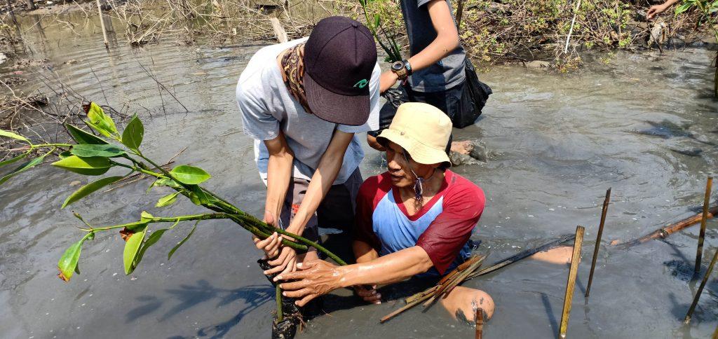 Tanam Semua Mangrovenya! Kuatkan Pesisir Tambakrejo!