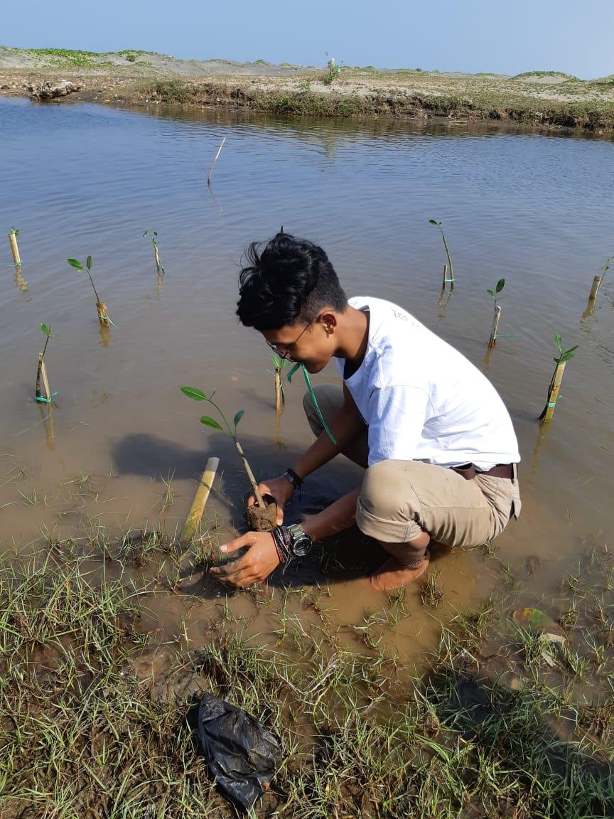 Belajar Memahami Peran Hutan Mangrove dengan Cara yang Mengasyikkan