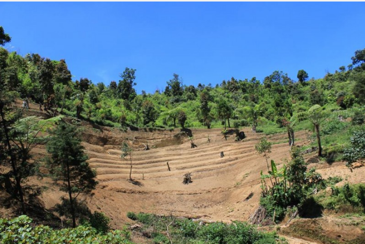 9 Dampak Akibat Kerusakan Hutan Bagi Lingkungan Hidup