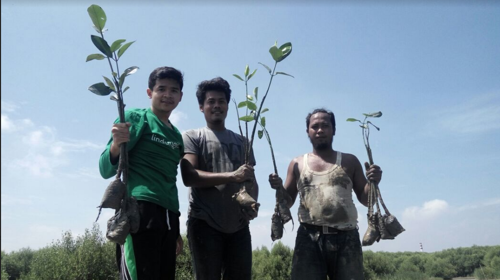 Relawan dan TIm LindungiHutan dalam Kegiatan Kampanye Alam di Trimulyo