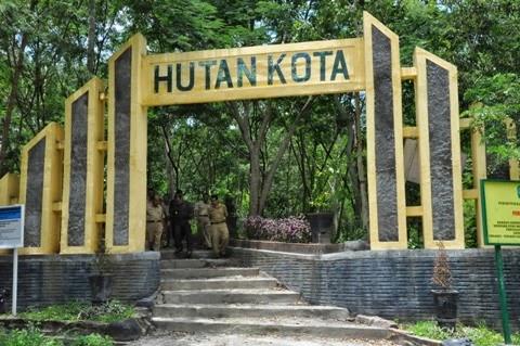 Hutan Kota, Sarana Pelepas Stress Masyarakat Perkotaan