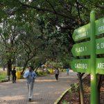 7 Aktivitas Yang Bisa Dilakukan Di Hutan Kota, Murah Dan Asyik Lho