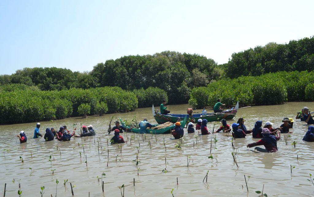 """Peserta asik menanam bibit mangrove pada program """"Harapan Baru untuk Bedono, Penanaman 1000 Mangrove"""" kolaborasi antara LindungiHutan dan Sustaination"""
