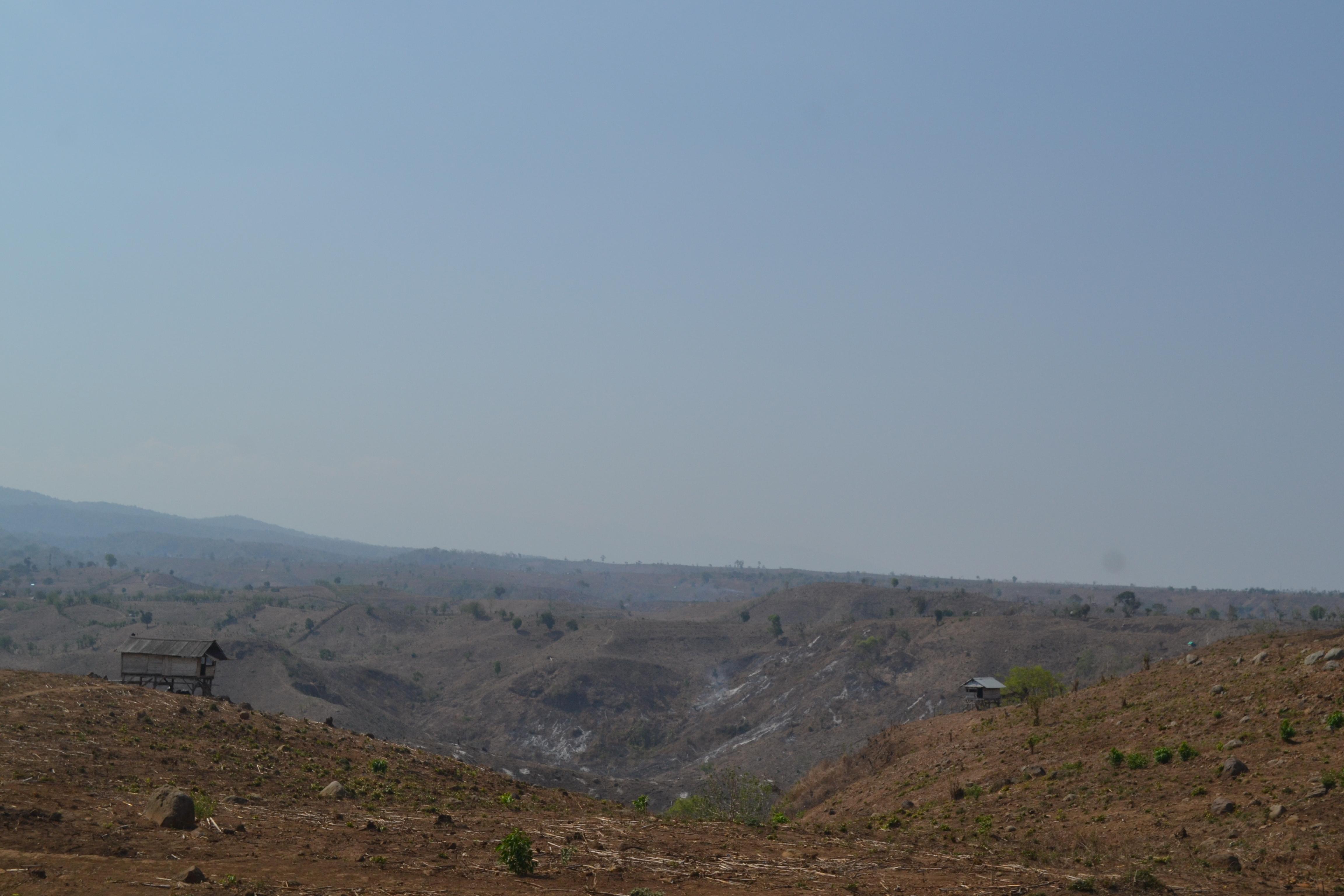 Foto yang diambil dalam pelaksanaan project RimbaBima. (Dok: Siktiyana/LindungiHutan)