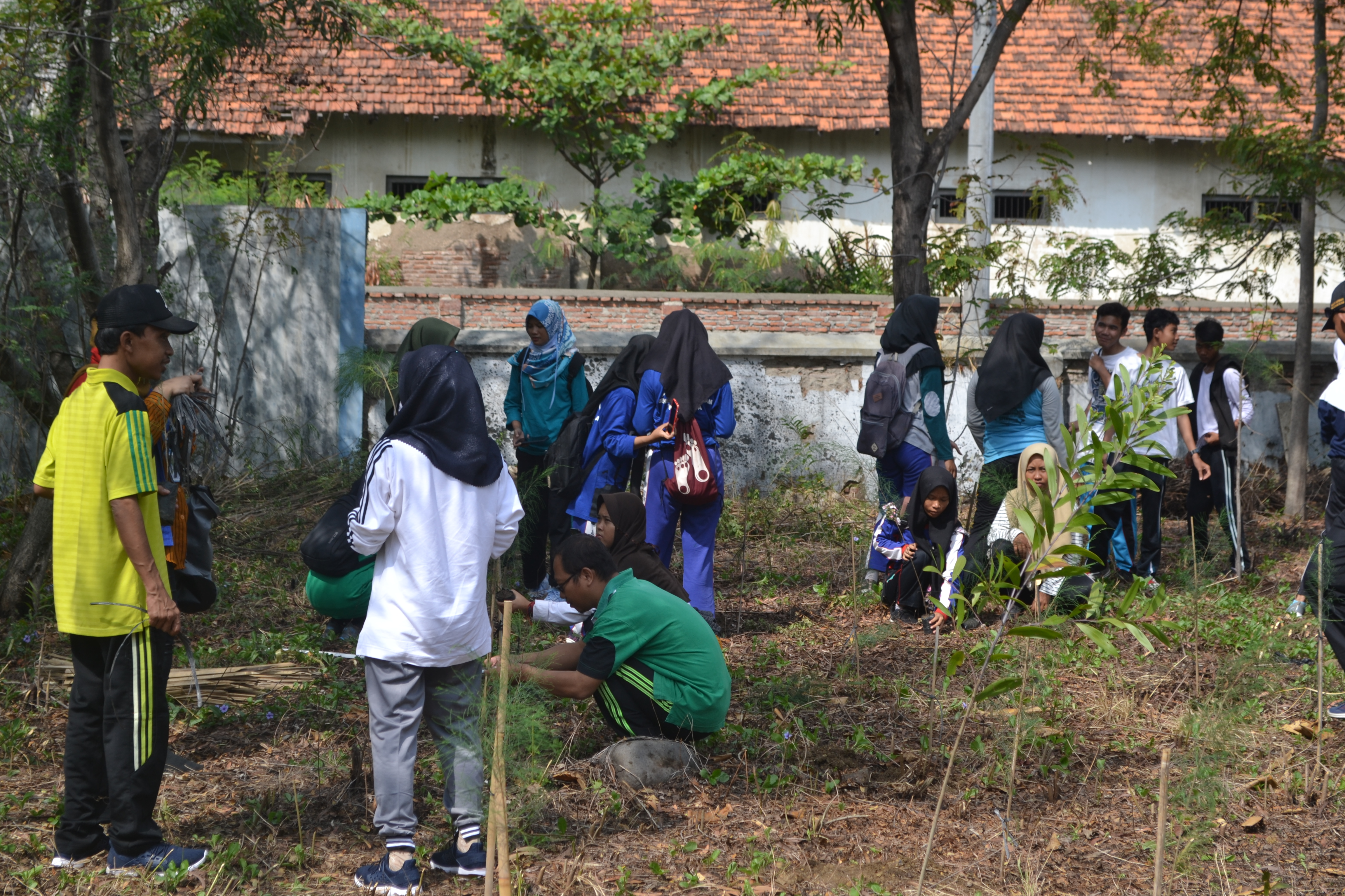 peserta sedang melakukan penanaman di kawasan Pantai Alam Indah,Kota Tegal