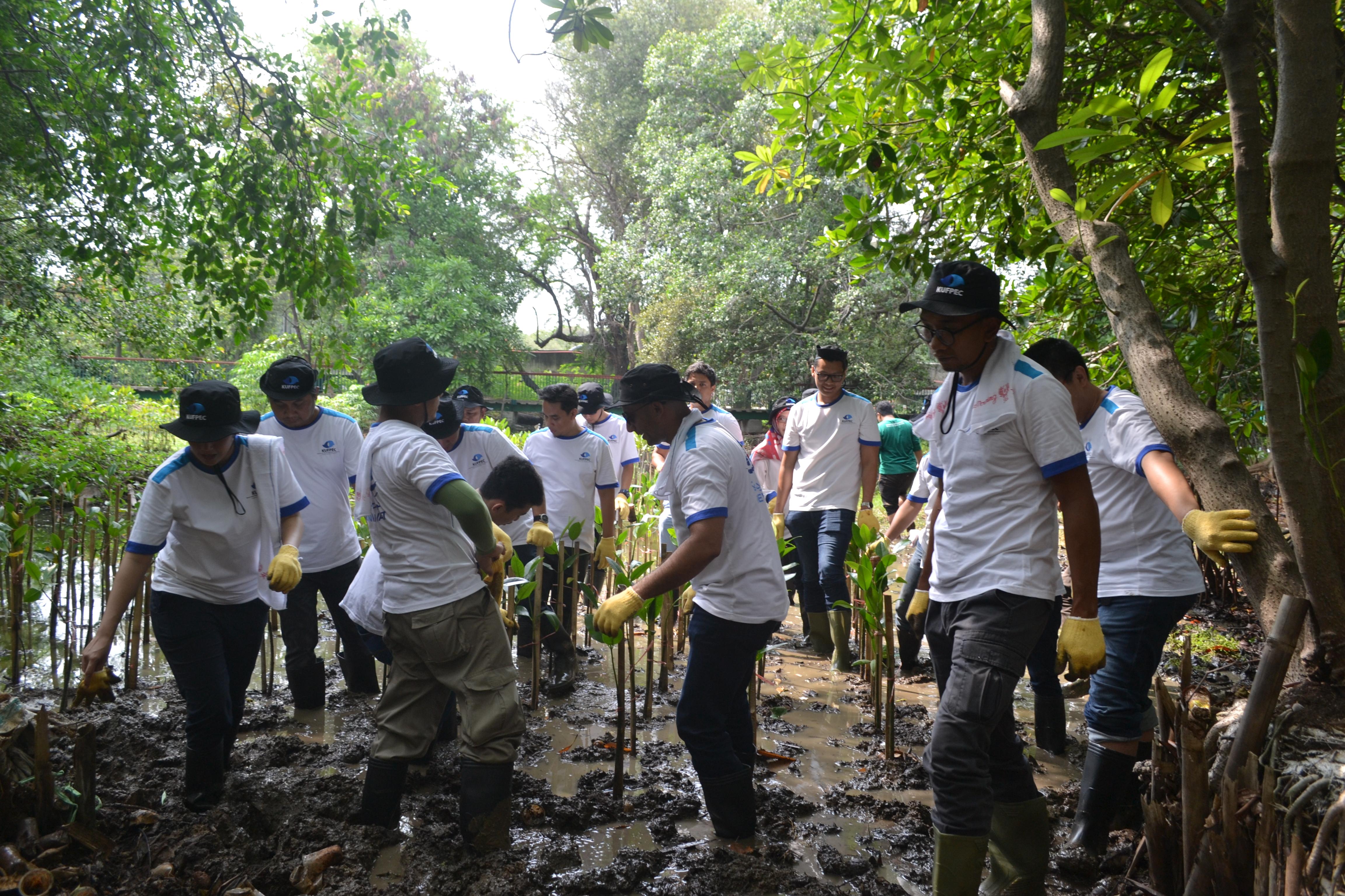 Co-Founder LindungiHutan, Kristina Dwi Suryani memberikan sambutan dalam bahasa inggris kepada KUFPEC sekaligus melakukan brief singkat tentang tatacara penanaman mangrove.