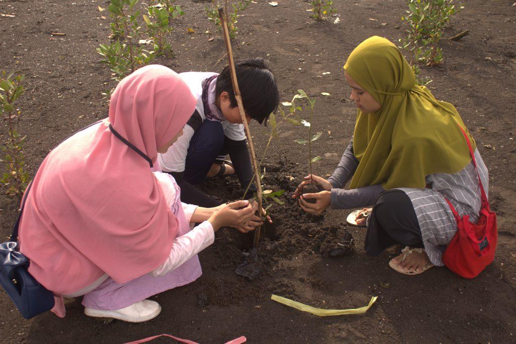 Mangrove untuk Pantai Barighaan