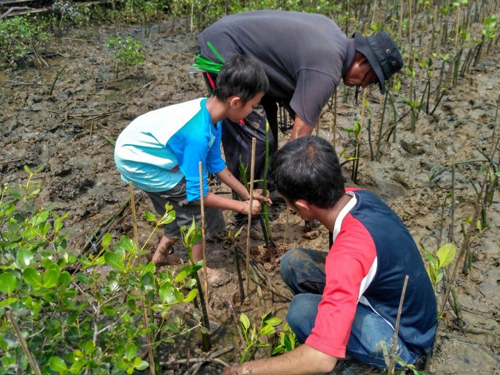 Menanam bersama Pak Sururi dan Kelompok Tani Mangrove Lestari