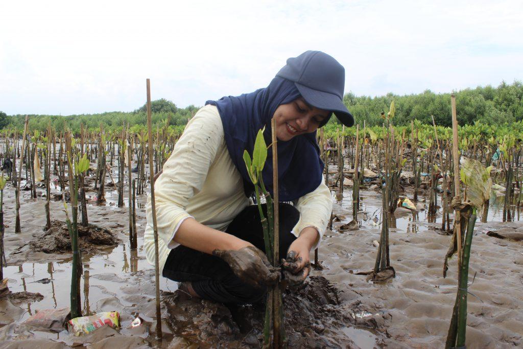 Penanaman Mangrove untuk Tingkatkan Keanekaragaman Hayati