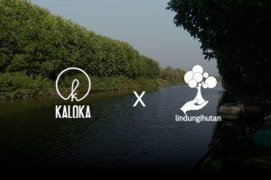 [Pre-Event] Mangrove Kaloka Pottery untuk Pesisir Demak